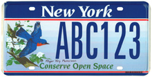New York Bluebird sample plate